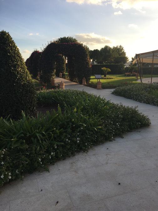 ザ セントレジス マルダバル マヨルカ リゾート(The St. Regis Mardavall Mallorca Resort)ガーデン
