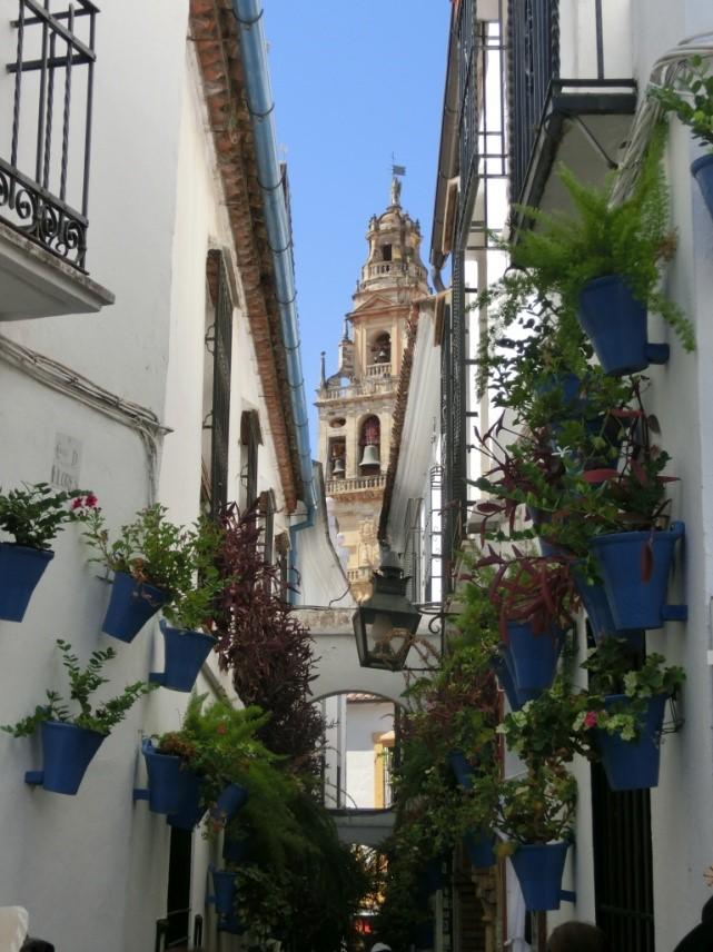 コルドバの旧ユダヤ人街の花の小道