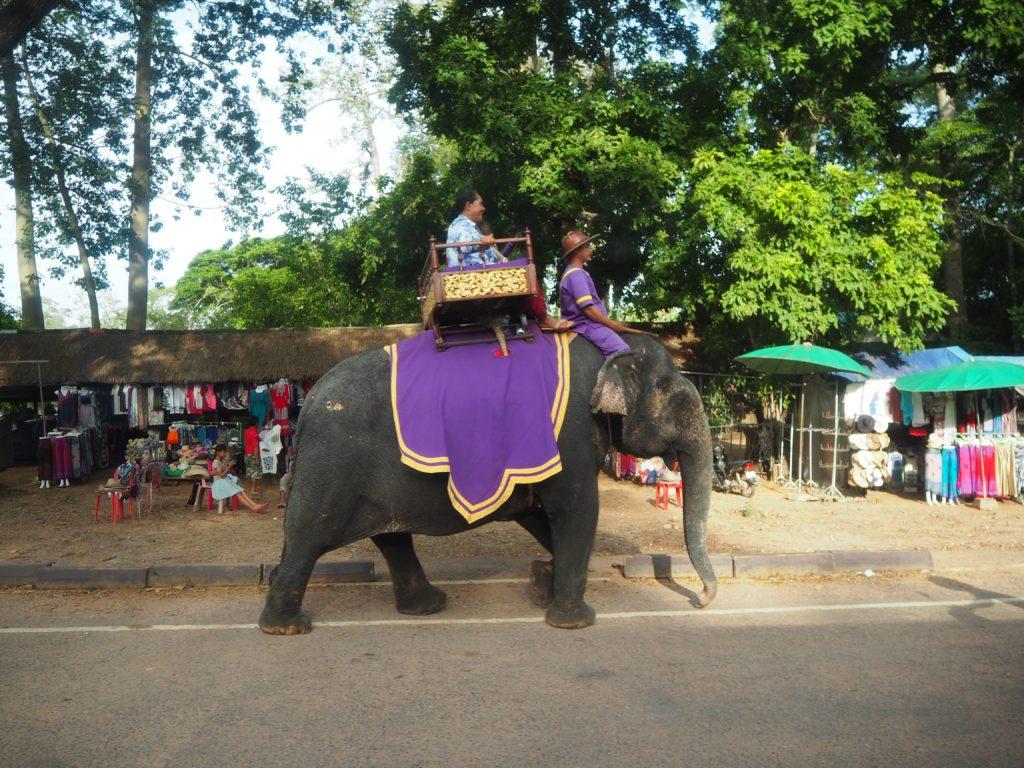 象に乗ってアンコールトムを回る様子