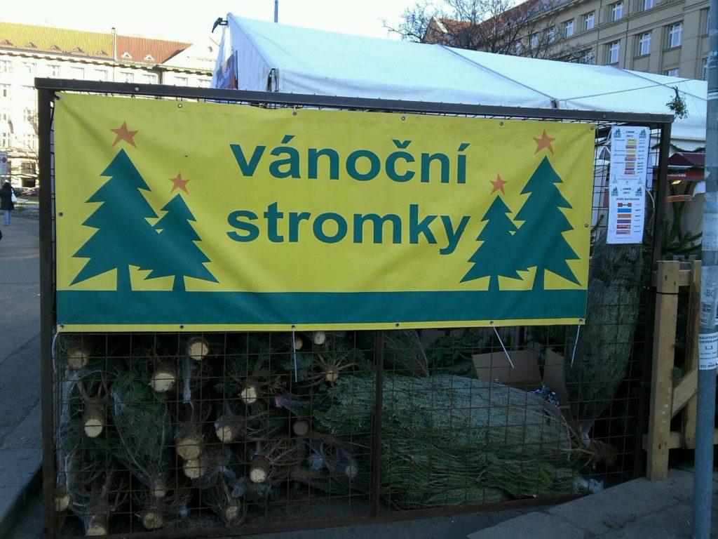 プラハのクリスマスツリー屋さん