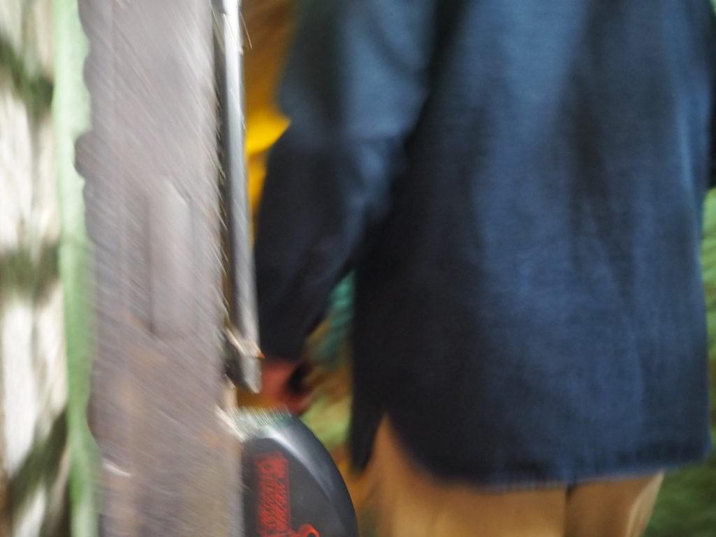 ドゥカーレ宮殿のシークレットツアーの入り口の扉