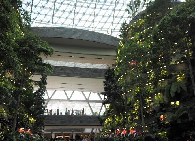 チャンギ国際空港の植物園、資生堂フォーレストバレー (Shiseido Forest Valley)
