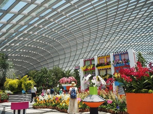 シンガポールのガーデンズバイザベイのフラワードーム内の様子