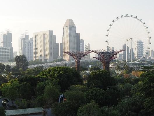 シンガポールのガーデンズバイザベイのOCBCスカイウェイから見た景色