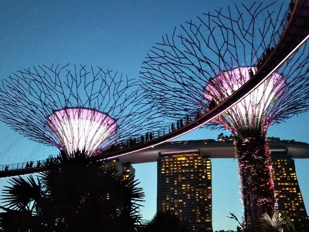 シンガポールのガーデンズバイザベイのスーパーツリー・グローブ