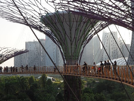 シンガポールのガーデンズバイザベイのOCBCスカイウェイ