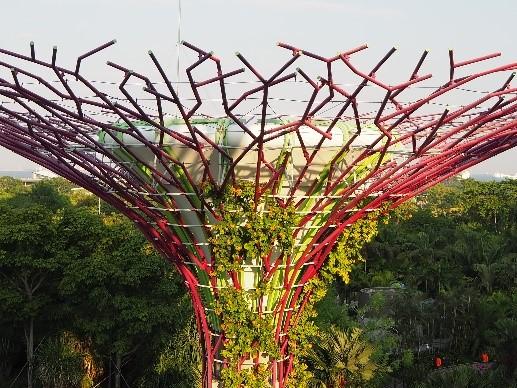 シンガポールのガーデンズバイザベイのスーパーツリー・グローブのLED装飾