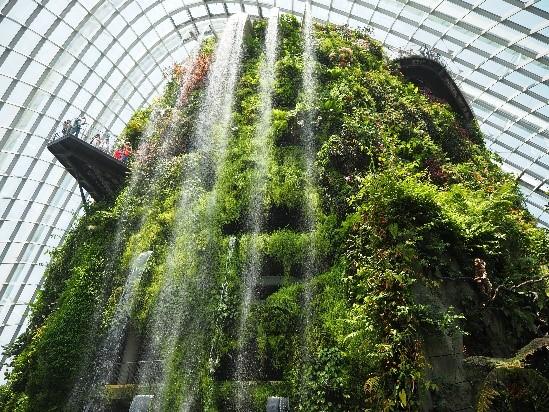 シンガポールのガーデンズバイザベイのクラウドフォレストの滝