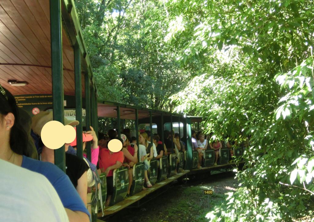 イグアスの滝のアルゼンチン側の国立公園を走るトロッコ列車